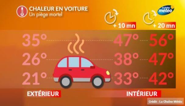 chaleur dans la voiture température stationnement